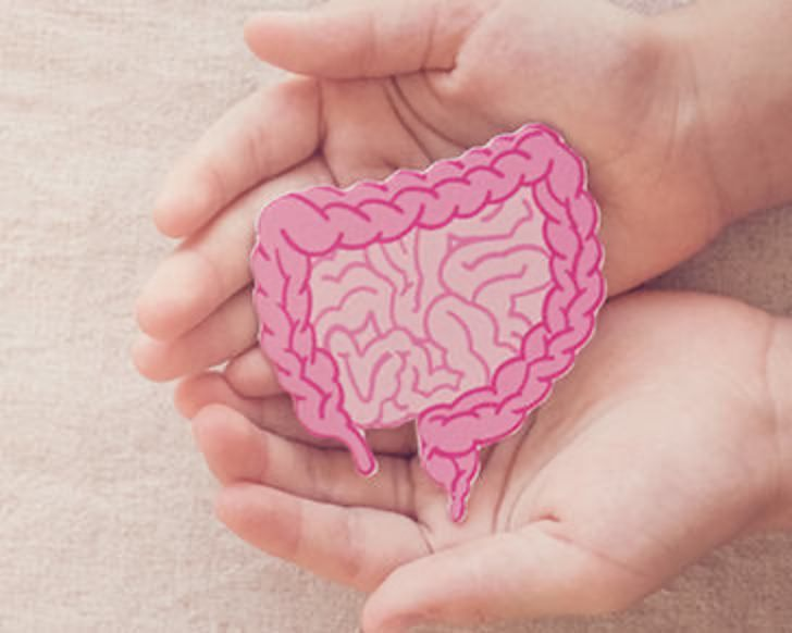 人体最大の免疫器官「腸」